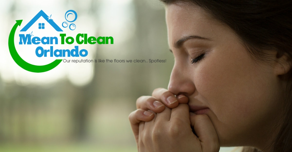 Why Should You Spring Clean Your Residence? 5 Reasons